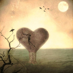 scarred heart by delphine devos